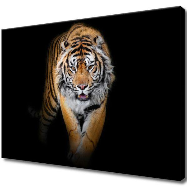Obraz Na Ścianę 70X50 Tygrys Tygrys Zwierzę zdjęcie 1