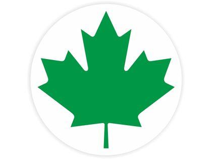 Naklejka zielony listek, początkujący kierowca