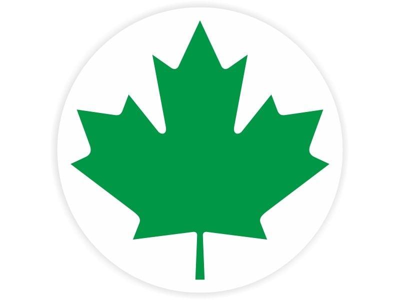 Naklejka zielony listek, początkujący kierowca zdjęcie 1