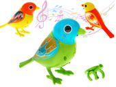 Digi Birds Interaktywny śpiewający ptaszek ZA1011