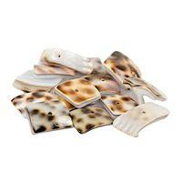 MUSZELKI muszla naturalna płatki cięte 1-2cm 14szt