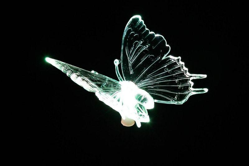 Lampa solarna kolorowa LED w kształcie motyla, oświetlenie ogrodowe zdjęcie 10