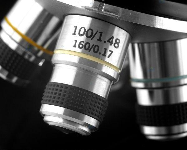 Mikroskop biologiczny levenhuk 320 u2022 arena.pl