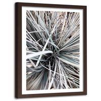 Obraz w ramie brązowej, Trawa dekoracyjna 60x90