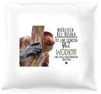 Poduszka z nosaczem -  Niedziela bez rosołu