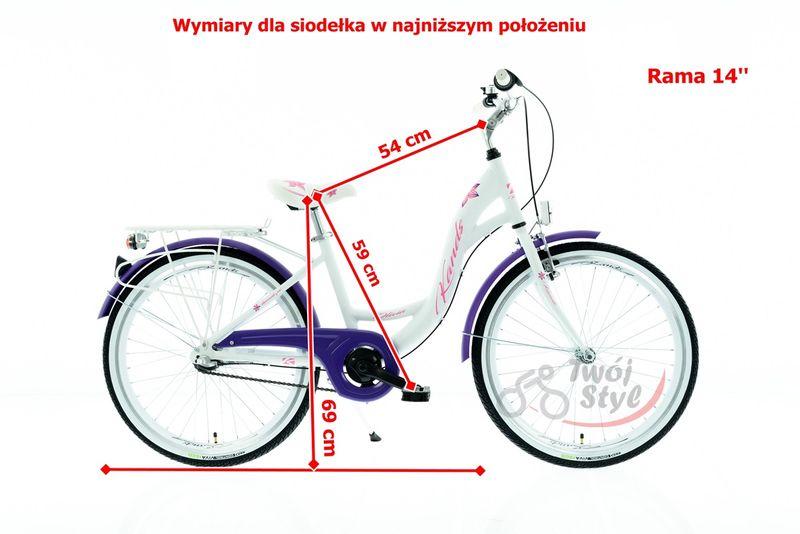 ROWER 24 KANDS OLIVIA NEXUS NA KOMUNIE BIAŁO-FIOLETOWY MAT  2020 r. na Arena.pl