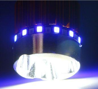 Żarówka motocyklowa 12V/9W BA20D LED 3LED, z kolorowym ringiem