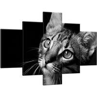 Obraz Na Ścianę 100X70 Spojrzenie Kotek Młody Kot