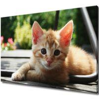 Obraz Na Ścianę 120X80 Rudy Kot Kotek Mały Kot Ru