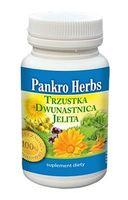 Pankro Herbs trzustka dwunastnica jelita 60 kaps.
