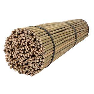 Tyczki bambusowe 120 cm 12/14 mm - 250 szt. BAMBUS