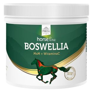 Suplement na stawy HORSE LINE Boswellia 500g