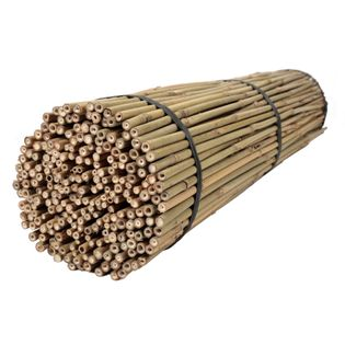 Tyczki bambusowe 60 cm 10/12 mm - 50 szt. BAMBUS