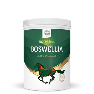 Suplement na stawy HORSE LINE Boswellia 900g