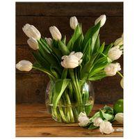 OBRAZ DRUKOWANY  Kremowe tulipany 40x50