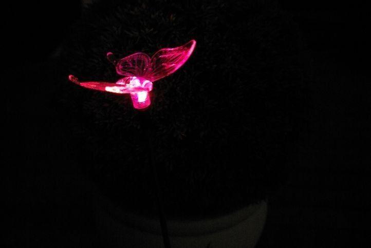 Lampa solarna kolorowa LED w kształcie motyla, oświetlenie ogrodowe zdjęcie 3
