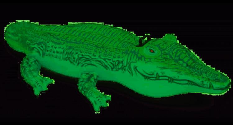 Intex Materac dmuchany aligator 168x86cm 58546 zdjęcie 2