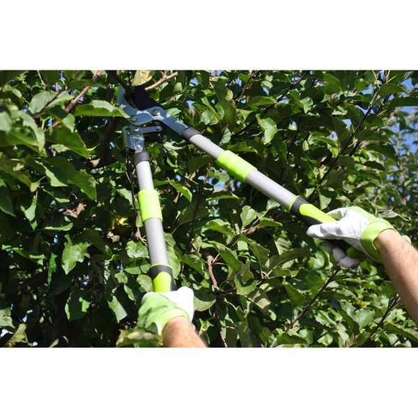 Nożyce do przycinania gałęzi FIELDMANN FZNR 1020 zdjęcie 3