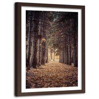 Obraz w ramie brązowej, Las jesienią 40x60