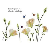 Naklejki na ścianę ścienne Białe Kwiaty Motyle WS-0066