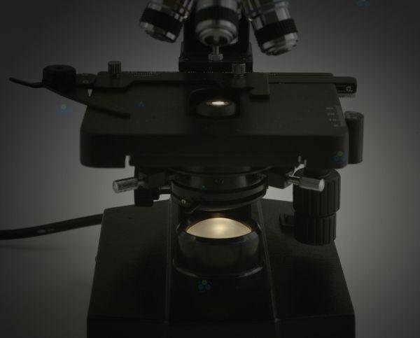 Mikroskop biologiczny levenhuk u arena pl