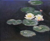 Reprodukcja Claude Monet - Lilie wodne - 40x60cm