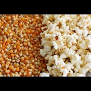 Popcorn Ziarno bez Soli - Kukurydza do Prażenia - 1 kg