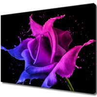 Obraz Na Ścianę 70X50 Róża Z Farb Abstrakcja Kolo