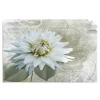 Obraz na płótnie - Canvas, Biały kwiat 100x70