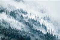 Fototapeta Las we Mgle ZIMA Góry Krajobraz 400x280