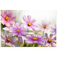 OBRAZ DRUKOWANY  Delikatne kwiaty 120x80
