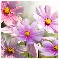 OBRAZ DRUKOWANY  Delikatne kwiaty 30x30