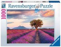 Ravensburger Puzzle Lawendowe pole 1000 el.