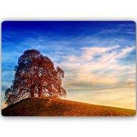 Obraz na metalu, Drzewo na wzgórzu 30x20