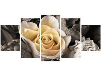 70cm 150cm obraz 5 elem Delikatna róża ścienny druk cyfrowy