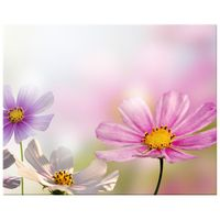 OBRAZ DRUKOWANY  Delikatne kwiaty 50x40
