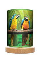Amazonia Papugi Lampa stołowa lampka nocna drewniana podstawa