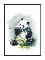 OBRAZ PLAKAT W RAMIE 33x43 cm Panda PD274,
