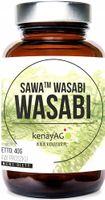 WASABI SAWA WASABI PROSZEK 40 GRAM