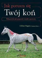 Jak porusza się Twój koń Gillian Higgins, Stephanie Martin