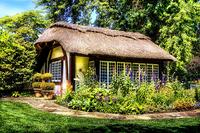 Kolorowy dom Rozmiar - 60x40