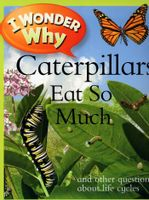 I Wonder Why - Catterpillars Eat So Much