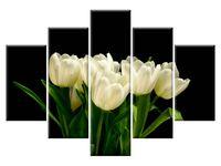 Białe tulipany - Mark Freeth 5H 150x105 do dziecięcego GRATISY