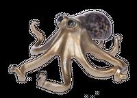 Złota figurka Octopus 17x15x7cm