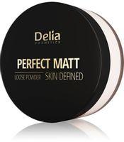 Delia Cosmetics Skin Defined Puder sypki Perfect Matt nr 43 Transparent 20g