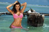 Kostium Kąpielowy Penelope Hollywood M-437 (3) Rozmiar S