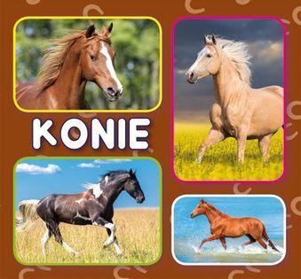 Konie praca zbiorowa