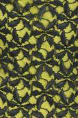 Koronkowa sukienka,żółto - czarna  - 38 / M zdjęcie 3