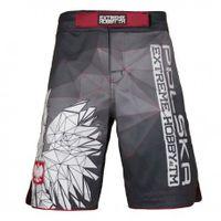 Extreme Hobby spodenki MMA Polska grey Rozmiar - M
